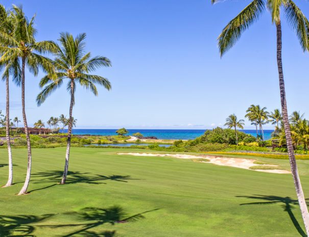 Hualalai Golf course with coconut trees and ocean beyond a small pond.