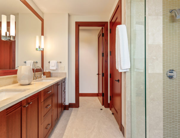 Shower glass door and double vanity facing open door