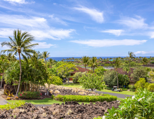 Lush tropical foliage mixed in with lava rock and residences with ocean beyond