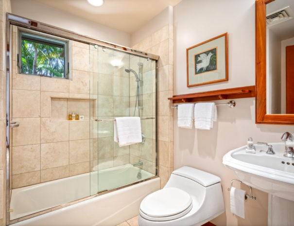9. HV2102 Guest Bath