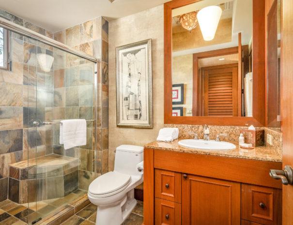 9. FV110D Guest Bath